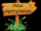 /Files/images/zagalna_vsh_grup/12_grupa/прогулянки 12.png
